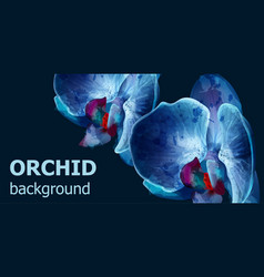 blue orchids watercolor background banner vector image