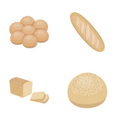 Cut loaf bread roll with powder half of bread vector