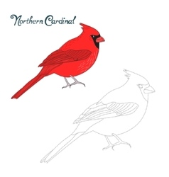 Educational game connect dots draw cardinal bird vector