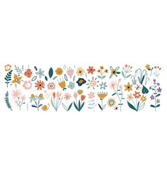 flower collection with leaves floral bouquets vector image