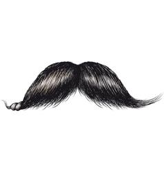 gentlemans mustache vector image