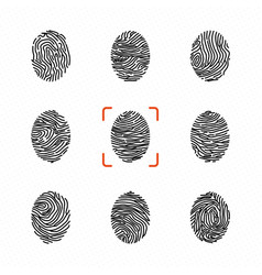 Set of individual fingerprints for personal vector