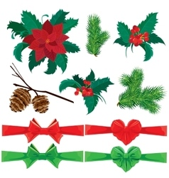 Set of winter holiday plants flowers berries and vector image