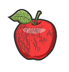 Apple fruit sketch vector