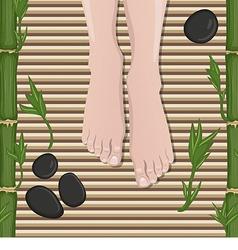Female feet vector