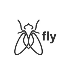 fly insect outline graphic design template vector image