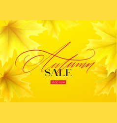 hello autumn sale background with realistic yellow vector image