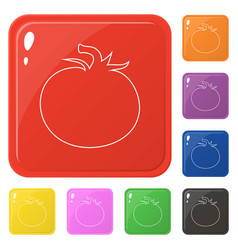 Line style tomato icons set 8 colors isolated on vector