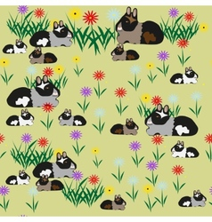 Pattern seamless of guinea pigs and colors vector