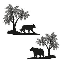 tiger and bear shadows vector image