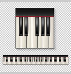 Realistic piano keys closeup isolated and vector