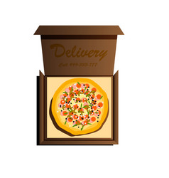 delivery of the most delicious pizza in the world vector image