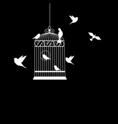 bird cage with birds flying vector image