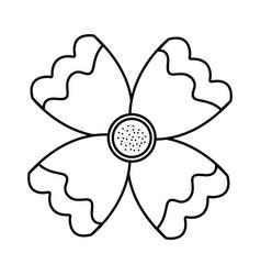 flower natural petal decoration image vector image