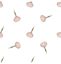 garlic hand drawn on white background hand drawn vector image