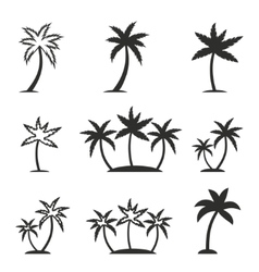 Palm tree icon set vector