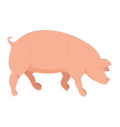 Pink pig in flat style vector