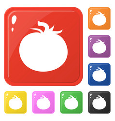 Tomato icons set 8 colors isolated on white vector