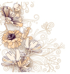 Wild flowers on a white vector