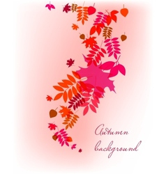 Autumn leaves falling background vector image vector image