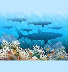 swimming shark shoal vector image vector image