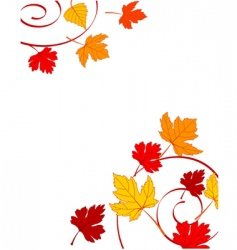 autumn ornament vector image vector image