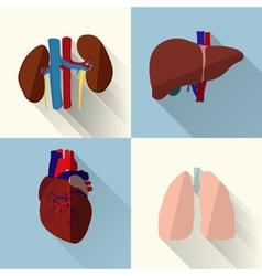 Human organs set vector