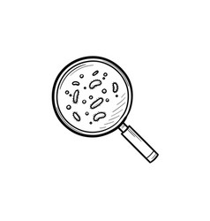 bacteria under magnifying glass hand drawn outline vector image