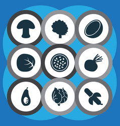 fruit icons set with beet tropical fruit vector image