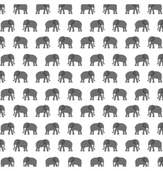 Pattern elephant animal tender isolated icon vector