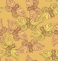 Sketch moth incect in vintage style vector image