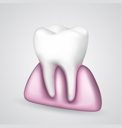 Tooth in the gum vector