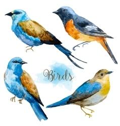 Watercolor hand drawn birds vector