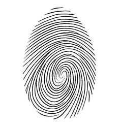 black fingerprint shape secure identification vector image