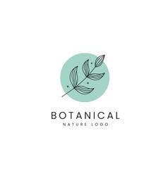 Botanical minimalist nature leaf branch logo icon vector
