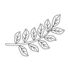 Branch with leaves - linear vector