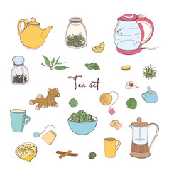 collection of tools for tea preparation and vector image