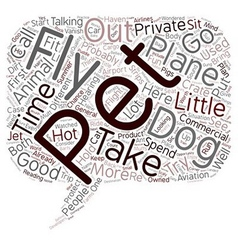 Hot dogs and planes text background wordcloud vector