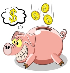 Pig piggy vector