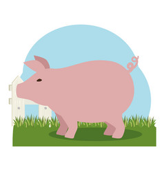 Pork farm animal icon vector