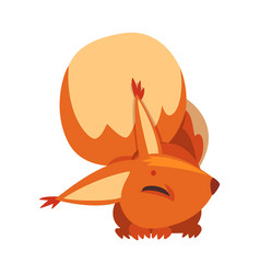 sleeping squirrel cute funny little rodent animal vector image