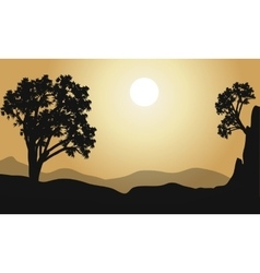 tree at hill silhouette vector image