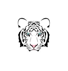 a white tiger head vector image vector image