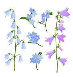 Drawing bell flowers vector