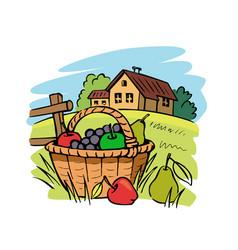 Farm fruit basket on grass vector