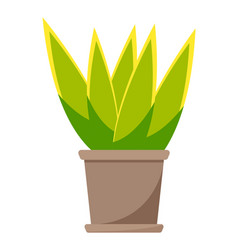 green home plant in brown ceramic pot flat vector image