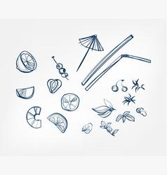 lemon mint straw umbrella one line art drink vector image
