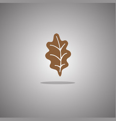 oak leaf brown isolated vector image