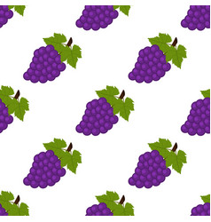 seamless background grapes on a white background vector image