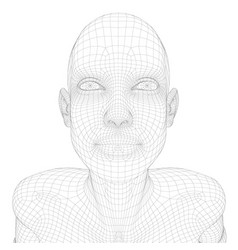 wireframe a girl with her head up view from vector image